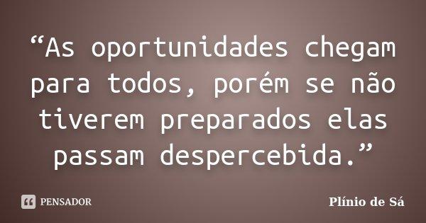 """""""As oportunidades chegam para todos, porém se não tiverem preparados elas passam despercebida.""""... Frase de Plínio de Sá."""