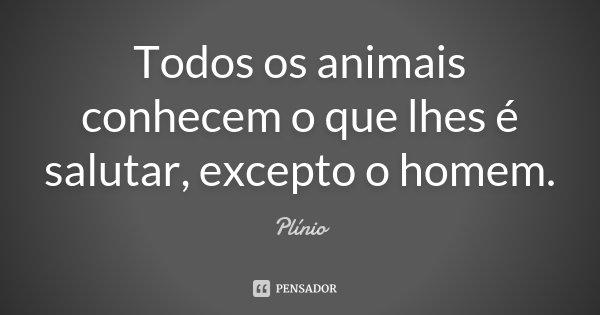 Todos os animais conhecem o que lhes é salutar, excepto o homem.... Frase de Plinio.