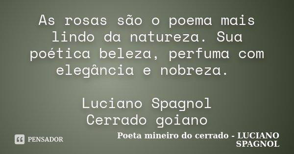 As rosas são o poema mais lindo da natureza. Sua poética beleza, perfuma com elegância e nobreza. Luciano Spagnol Cerrado goiano... Frase de Poeta mineiro do cerrado - LUCIANO SPAGNOL.