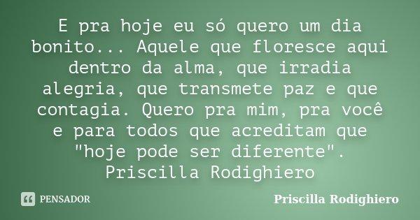 E Pra Hoje Eu Só Quero Um Dia Bonito Priscilla Rodighiero