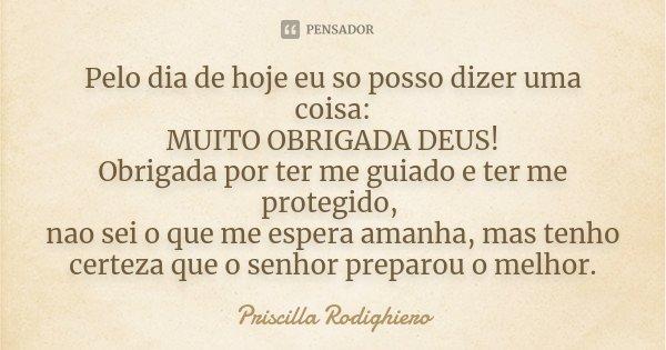 Pelo Dia De Hoje Eu So Posso Dizer Uma... Priscilla Rodighiero