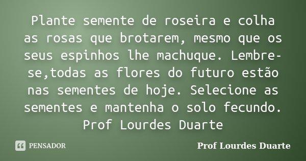 Plante semente de roseira e colha as rosas que brotarem, mesmo que os seus espinhos lhe machuque. Lembre-se,todas as flores do futuro estão nas sementes de hoje... Frase de Prof Lourdes Duarte.