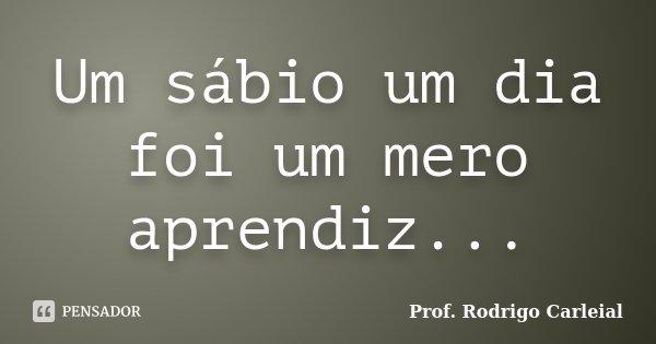 Um sábio um dia foi um mero aprendiz...... Frase de Prof. Rodrigo Carleial.