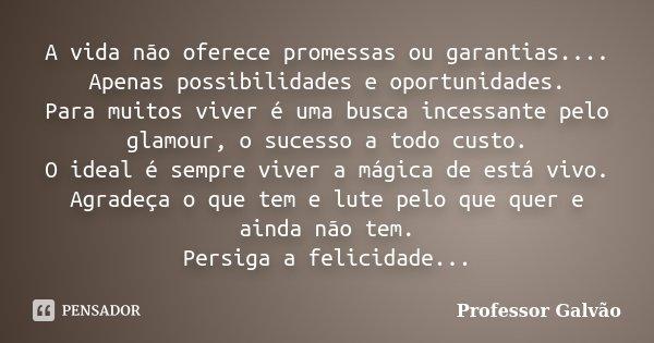 A vida não oferece promessas ou garantias.... Apenas possibilidades e oportunidades. Para muitos viver é uma busca incessante pelo glamour, o sucesso a todo cus... Frase de Professor Galvão.