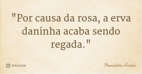 """""""Por causa da rosa, a erva daninha acaba sendo regada.""""... Frase de Provérbio Árabe."""