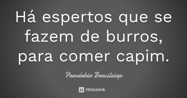 Há espertos que se fazem de burros, para comer capim.... Frase de Provérbio Brasileirp.