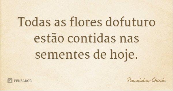 Todas as flores dofuturo estão contidas nas sementes de hoje.... Frase de Provérbio Chinês.