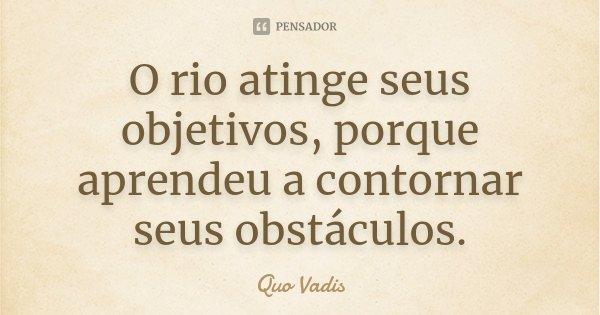 O rio atinge seus objetivos, porque aprendeu a contornar seus obstáculos.... Frase de Quo Vadis.