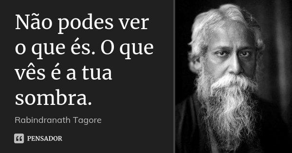 Não podes ver o que és. O que vês é a tua sombra.... Frase de Rabindranath Tagore.