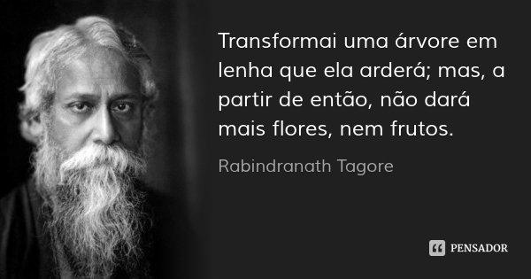 Transformai uma árvore em lenha que ela arderá; mas, a partir de então, não dará mais flores, nem frutos.... Frase de Rabindranath Tagore.