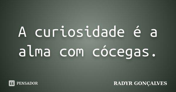 A curiosidade é a alma com cócegas.... Frase de RADYR GONÇALVES.
