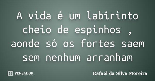 A vida é um labirinto cheio de espinhos , aonde só os fortes saem sem nenhum arranham... Frase de Rafael da Silva Moreira.