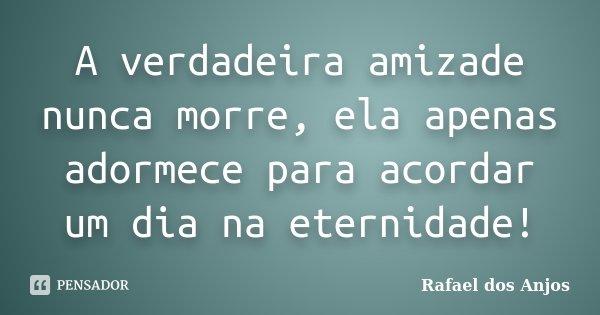 A verdadeira amizade nunca morre, ela apenas adormece para acordar um dia na eternidade!... Frase de Rafael dos Anjos.