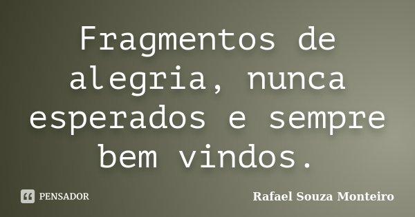 Fragmentos de alegria, nunca esperados e sempre bem vindos.... Frase de Rafael Souza Monteiro.
