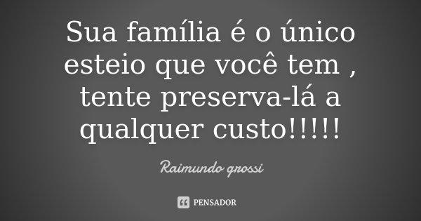 Sua família é o único esteio que você tem , tente preserva-lá a qualquer custo!!!!!... Frase de Raimundo grossi.