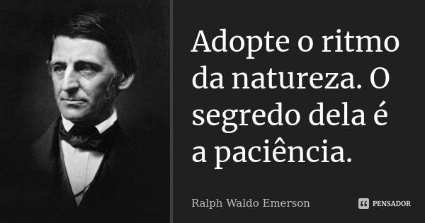 Adopte o ritmo da natureza. O segredo dela é a paciência.... Frase de Ralph Waldo Emerson.