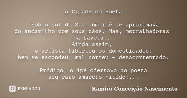 """A Cidade do Poeta """"Sob o sol do Sul, um ipê se aproximava do andarilho com seus cães. Mas, metralhadoras na favela... Ainda assim, o artista libertou os do... Frase de Ramiro Conceição Nascimento."""