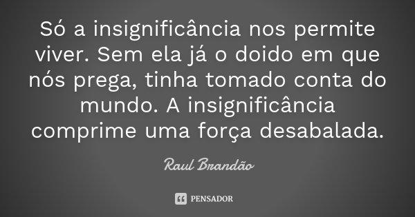 Só a insignificância nos permite viver. Sem ela já o doido em que nós prega, tinha tomado conta do mundo. A insignificância comprime uma força desabalada.... Frase de Raúl Brandão.