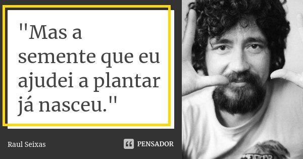 """""""Mas a semente que eu ajudei a plantar já nasceu.""""... Frase de Raul Seixas."""