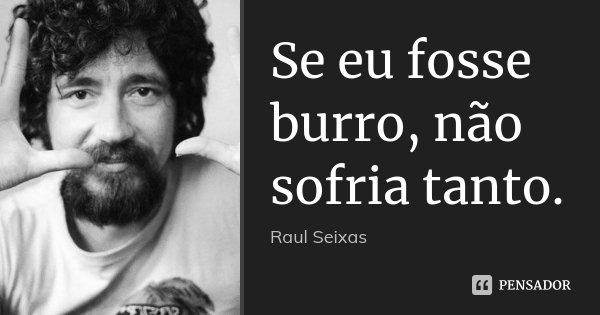 Se eu fosse burro, não sofria tanto.... Frase de Raul Seixas.