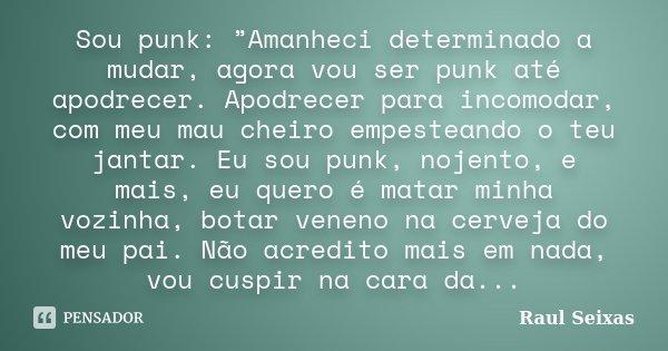 """Sou punk: """"Amanheci determinado a mudar, agora vou ser punk até apodrecer. Apodrecer para incomodar, com meu mau cheiro empesteando o teu jantar. Eu sou punk, n... Frase de Raul Seixas."""