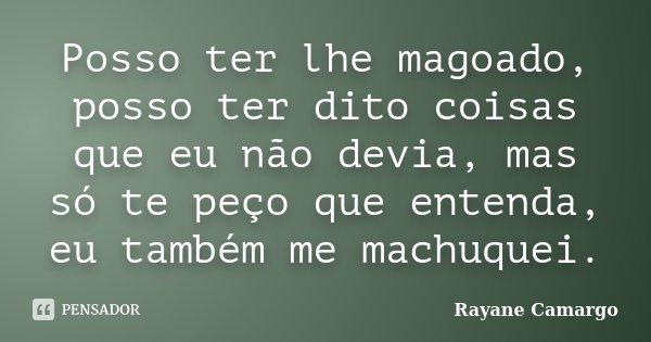 Posso ter lhe magoado, posso ter dito coisas que eu não devia, mas só te peço que entenda, eu também me machuquei.... Frase de Rayane Camargo.