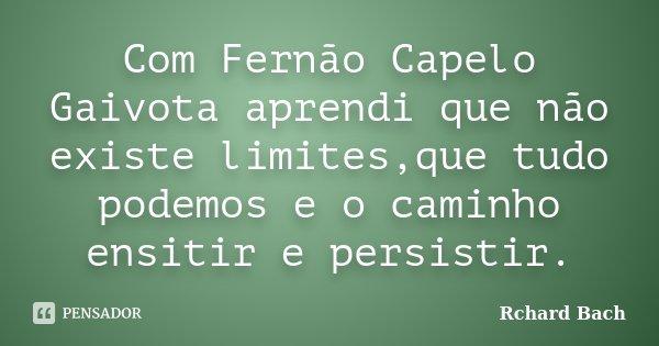 Com Fernão Capelo Gaivota aprendi que não existe limites,que tudo podemos e o caminho ensitir e persistir.... Frase de Rchard Bach.