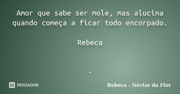 Amor que sabe ser mole, mas alucina quando começa a ficar todo encorpado. Rebeca -... Frase de Rebeca - Néctar da Flor.