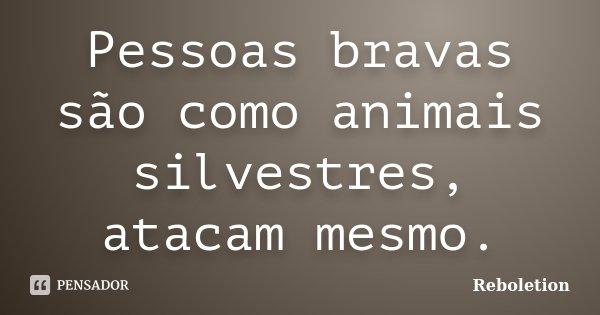 Pessoas bravas são como animais silvestres, atacam mesmo.... Frase de Reboletion.