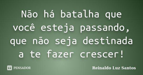 Não há batalha que você esteja passando, que não seja destinada a te fazer crescer!... Frase de Reinaldo Luz Santos.