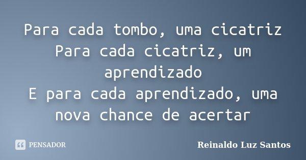 Para cada tombo, uma cicatriz Para cada cicatriz, um aprendizado E para cada aprendizado, uma nova chance de acertar... Frase de Reinaldo Luz Santos.