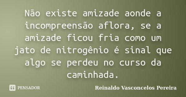 Não existe amizade aonde a incompreensão aflora, se a amizade ficou fria como um jato de nitrogênio é sinal que algo se perdeu no curso da caminhada.... Frase de Reinaldo Vasconcelos Pereira.