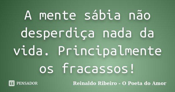 A mente sábia não desperdiça nada da vida. Principalmente os fracassos!... Frase de Reinaldo Ribeiro - O poeta do Amor.