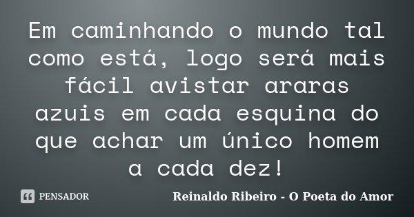 Em caminhando o mundo tal como está, logo será mais fácil avistar araras azuis em cada esquina do que achar um único homem a cada dez!... Frase de Reinaldo Ribeiro - O Poeta do Amor.