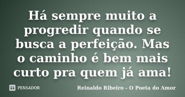 Há sempre muito a progredir quando se busca a perfeição. Mas o caminho é bem mais curto pra quem já ama!... Frase de Reinaldo Ribeiro - O Poeta do Amor.