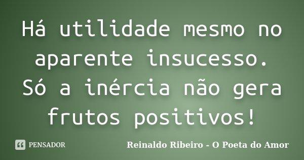 Há utilidade mesmo no aparente insucesso. Só a inércia não gera frutos positivos!... Frase de Reinaldo Ribeiro - O poeta do Amor.