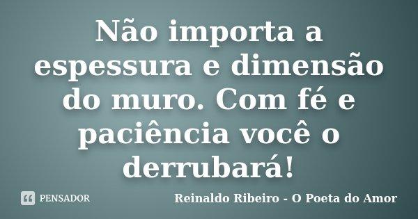 Não importa a espessura e dimensão do muro. Com fé e paciência você o derrubará!... Frase de Reinaldo Ribeiro - O poeta do Amor.