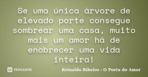 Se uma única árvore de elevado porte consegue sombrear uma casa, muito mais um amor há de enobrecer uma vida inteira!... Frase de Reinaldo Ribeiro - O poeta do Amor.