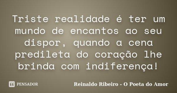 Triste realidade é ter um mundo de encantos ao seu dispor, quando a cena predileta do coração lhe brinda com indiferença!... Frase de Reinaldo Ribeiro - O Poeta do Amor.