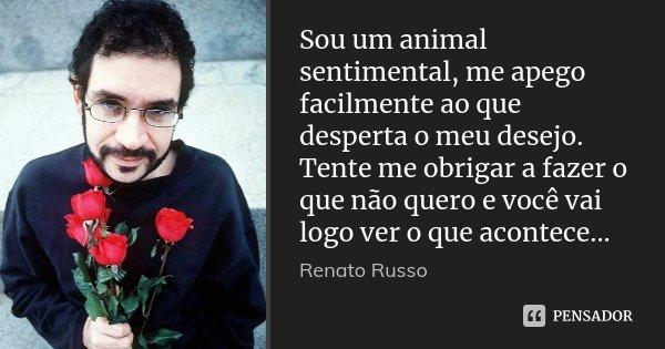 Sou um animal sentimental, me apego facilmente ao que desperta o meu desejo. Tente me obrigar a fazer o que não quero e você vai logo ver o que acontece...... Frase de Renato Russo.