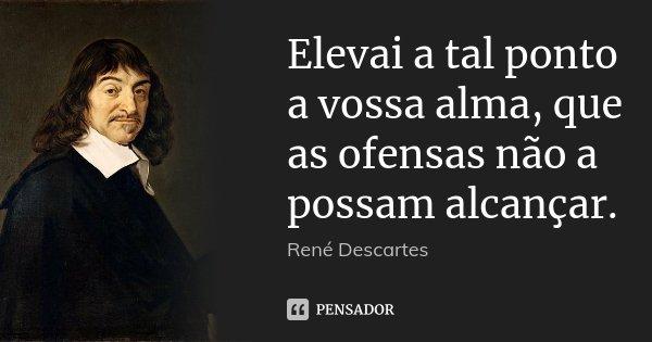 Elevai a tal ponto a vossa alma, que as ofensas não a possam alcançar.... Frase de René Descartes.