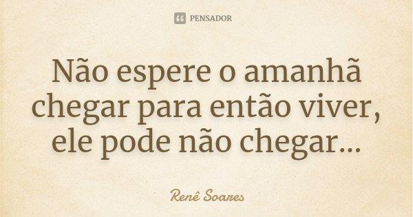 Não espere o amanhã chegar para então viver, ele pode não chegar...... Frase de Renê Soares.