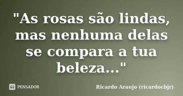 """""""As rosas são lindas, mas nenhuma delas se compara a tua beleza...""""... Frase de Ricardo Araujo (ricardocbjr)."""