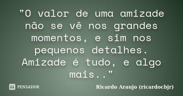 """""""O valor de uma amizade não se vê nos grandes momentos, e sim nos pequenos detalhes. Amizade é tudo, e algo mais..""""... Frase de Ricardo Araujo (ricardocbjr)."""