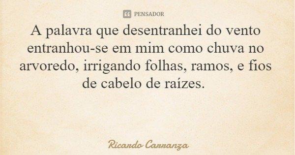 A palavra que desentranhei do vento entranhou-se em mim como chuva no arvoredo, irrigando folhas, ramos, e fios de cabelo de raízes.... Frase de Ricardo Carranza.