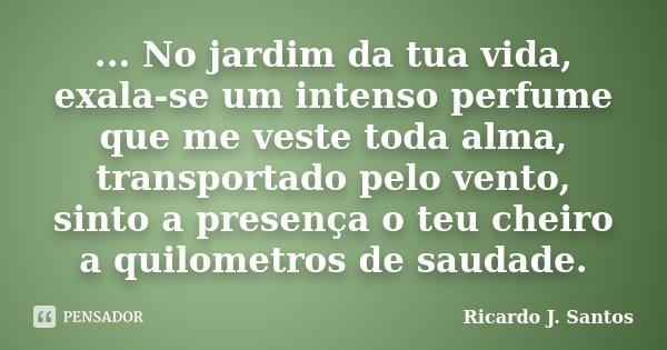 ... No jardim da tua vida, exala-se um intenso perfume que me veste toda alma, transportado pelo vento, sinto a presença o teu cheiro a quilometros de saudade.... Frase de Ricardo J. Santos.