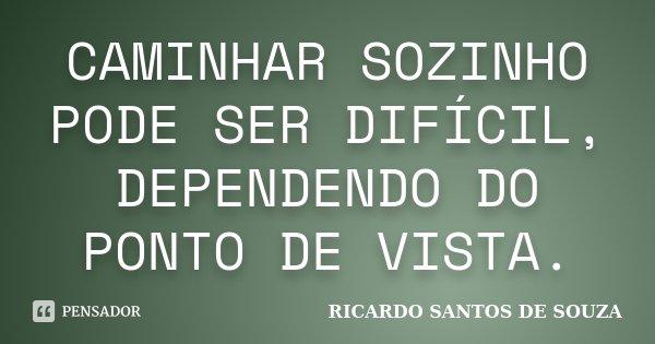 CAMINHAR SOZINHO PODE SER DIFÍCIL, DEPENDENDO DO PONTO DE VISTA.... Frase de RICARDO SANTOS DE SOUZA.