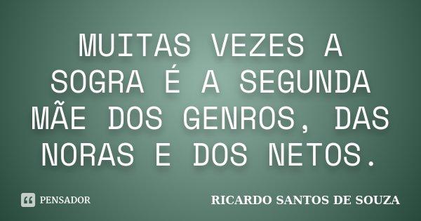MUITAS VEZES A SOGRA É A SEGUNDA MÃE DOS GENROS, DAS NORAS E DOS NETOS.... Frase de RICARDO SANTOS DE SOUZA.