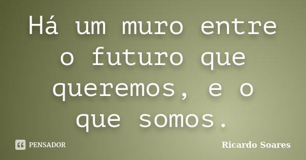 Há um muro entre o futuro que queremos, e o que somos.... Frase de Ricardo Soares.