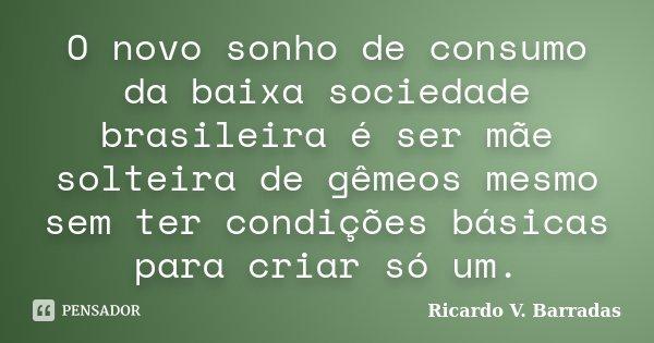 O novo sonho de consumo da baixa sociedade brasileira é ser mãe solteira de gêmeos mesmo sem ter condições básicas para criar só um.... Frase de RICARDO V. BARRADAS.